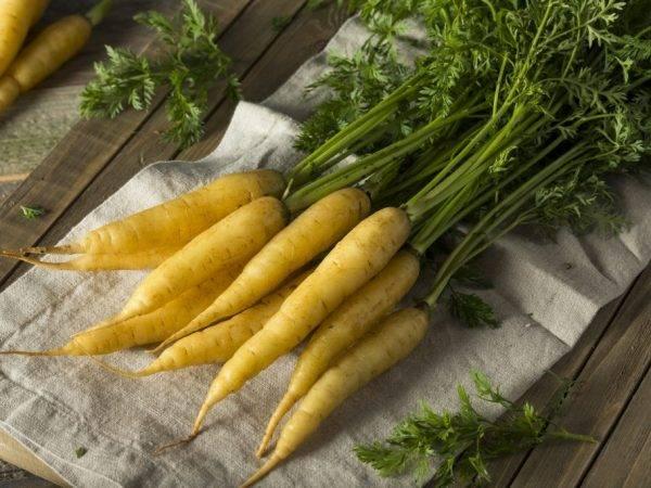 Почему появляется зелёная сердцевина у моркови?