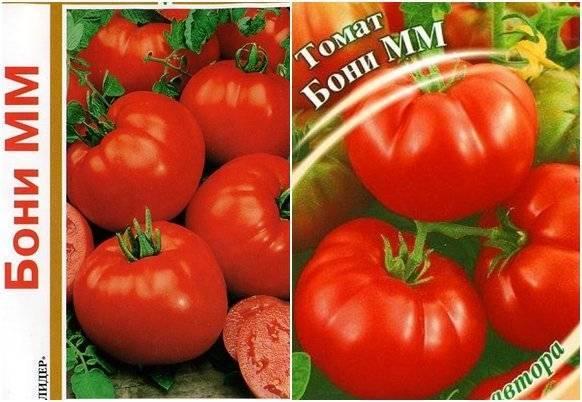 Томат бони мм: характеристика и описание сорта, отзыв, фото
