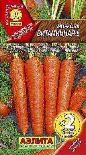 Посадка моркови или секреты урожайной грядки