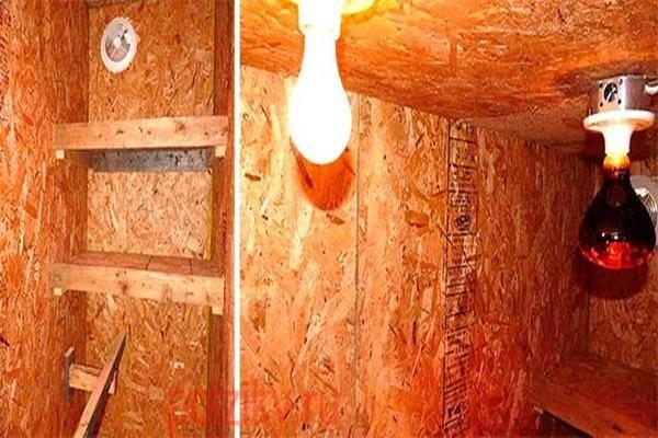 Освещение в курятнике зимой или ночное время