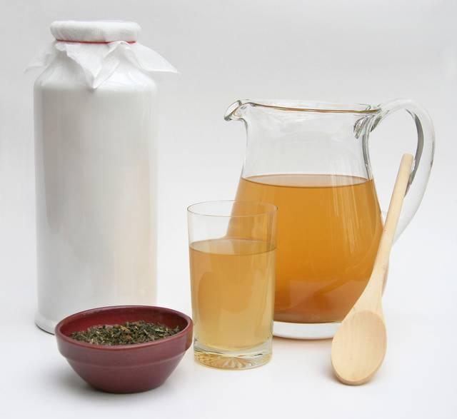 Инструкция по уходу и приготовлению напитка чайного гриба