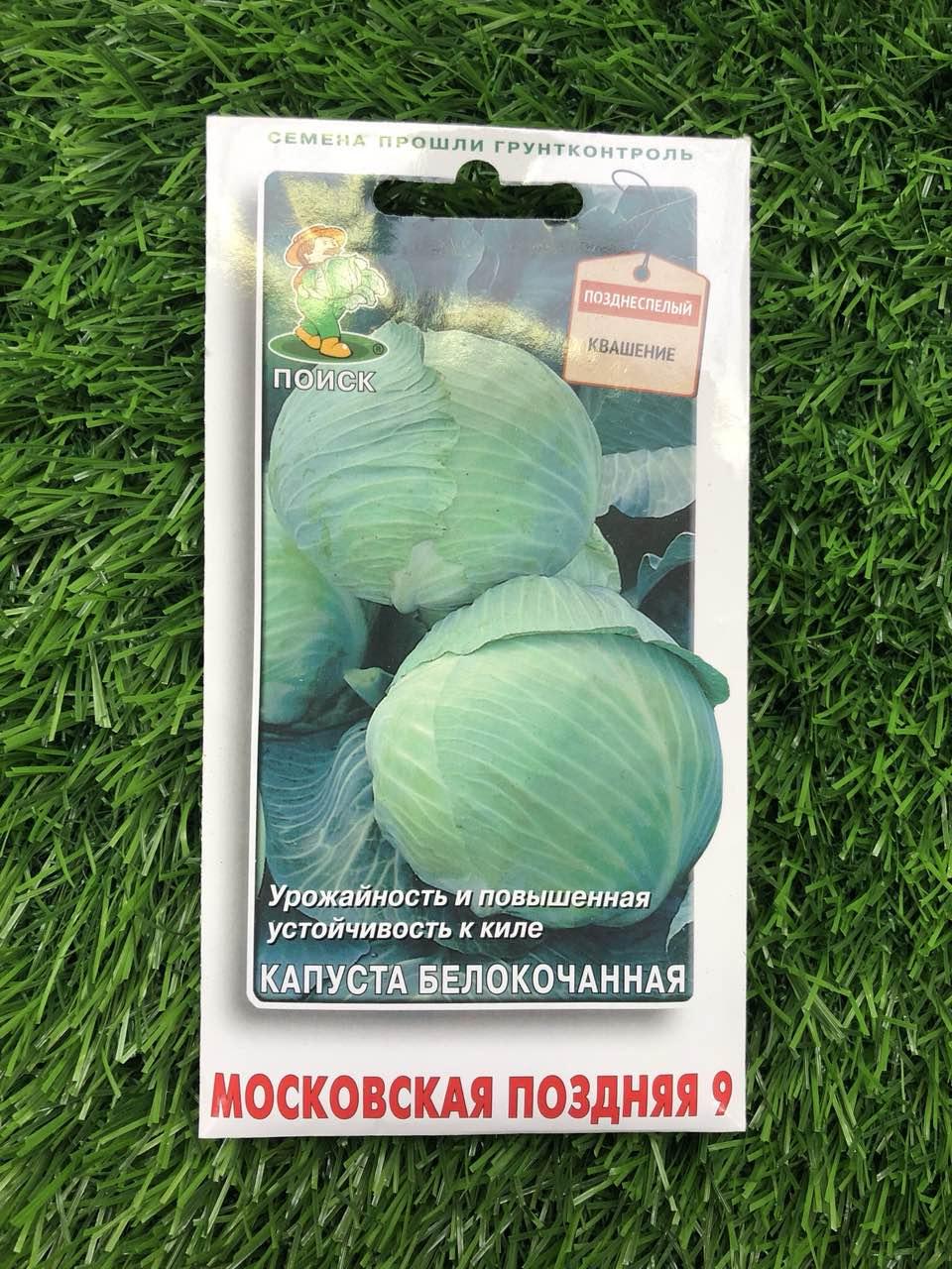 Капуста московская поздняя 15 —  подробное описание сорта