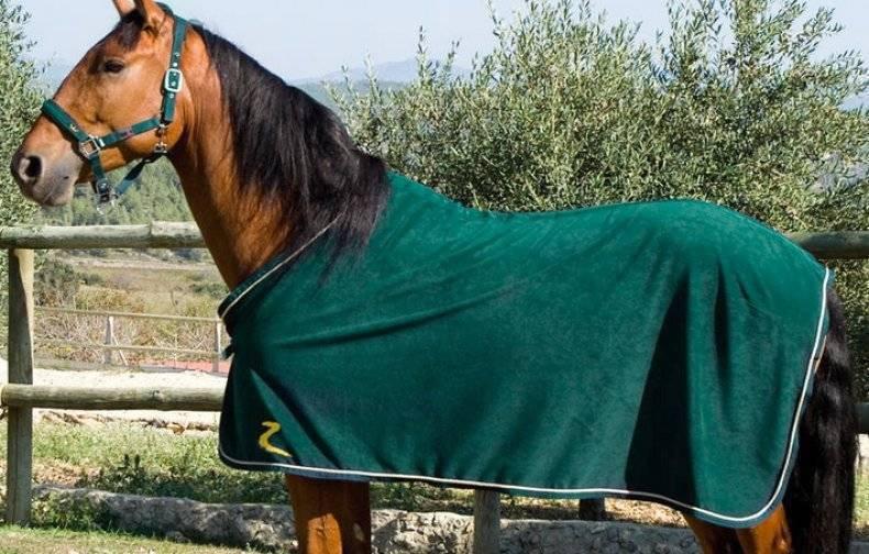Что такое попона, зачем она нужна лошади и как ее сшить