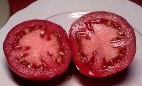 Характеристика и описание сорта томата сибирское чудо, его урожайность – дачные дела