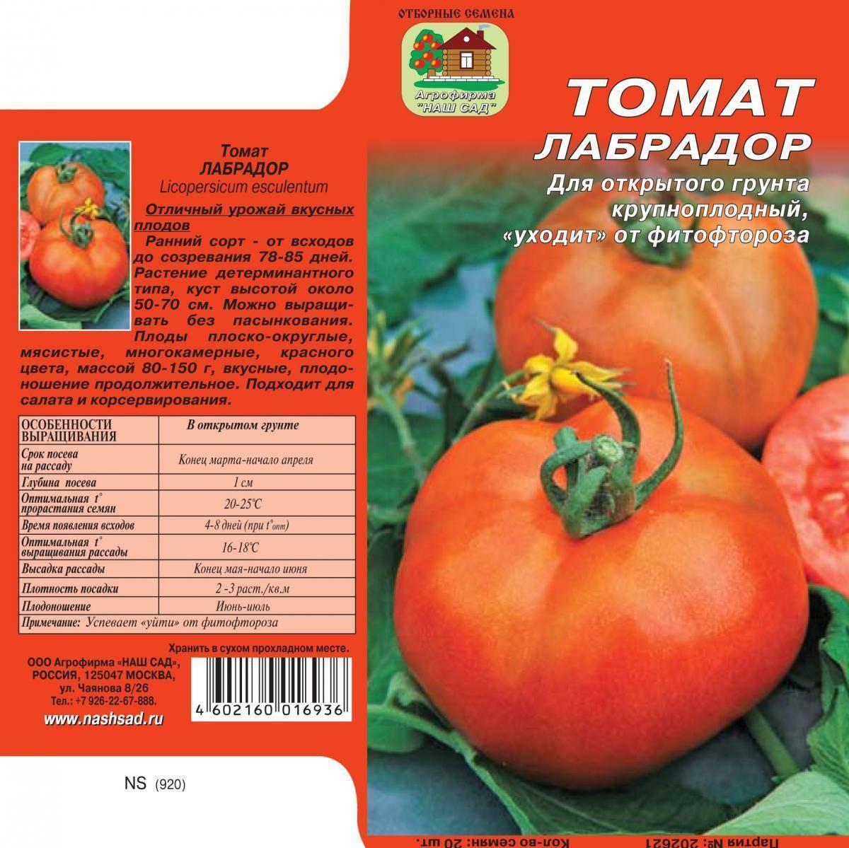Томат лабрадор: характеристика и описание сорта, отзывы