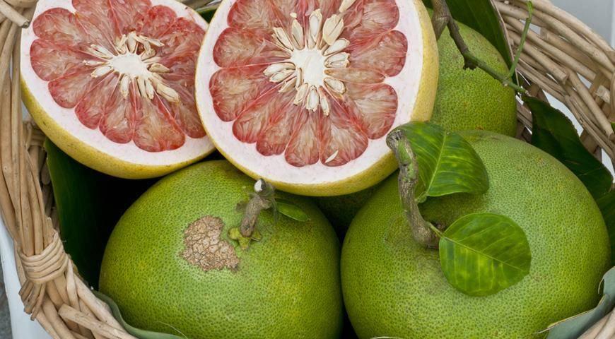 Сорта помело: красный, розовый, желтый, зеленый и другие виды