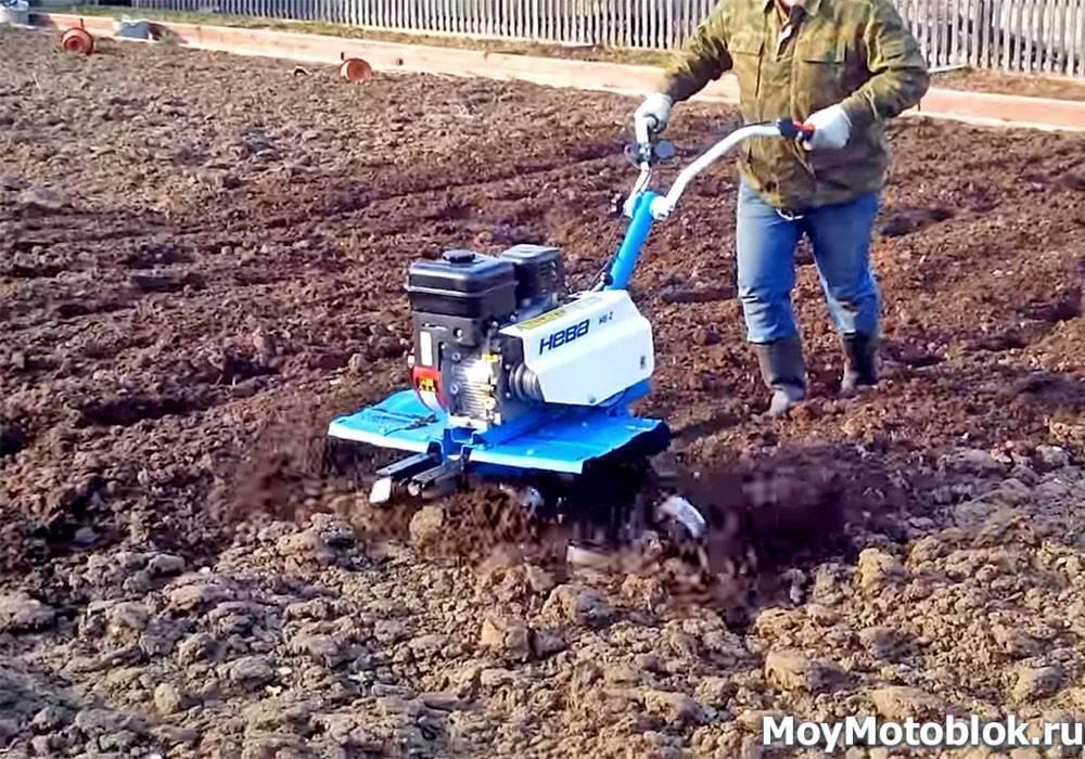 Боронование почвы как способ увеличения урожайности + видео