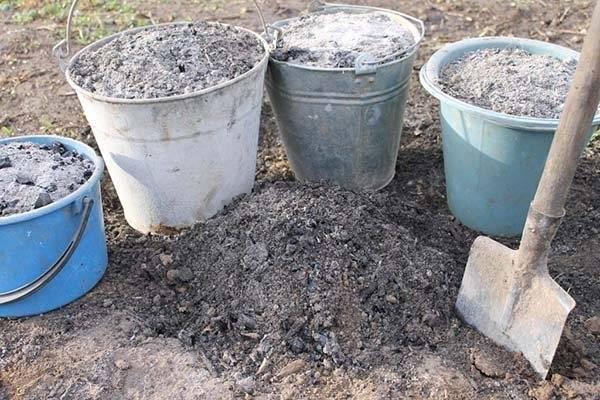 Как применять на огороде древесную золу - натуральное удобрение