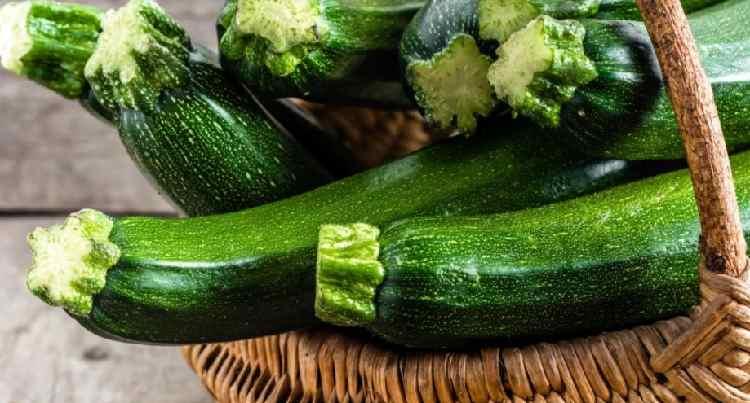 Польза и вред кабачков для здоровья человека: свойства сока, семечек