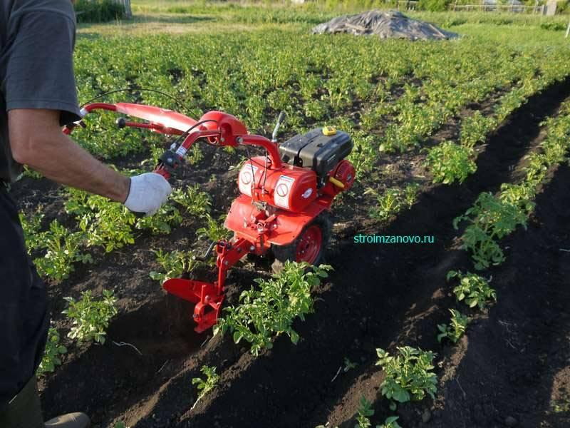 Культиватор-окучник: как выбрать модель для окучивания картофеля? технические характеристики кон-2,8 и трехрядной модели. тонкости эксплуатации