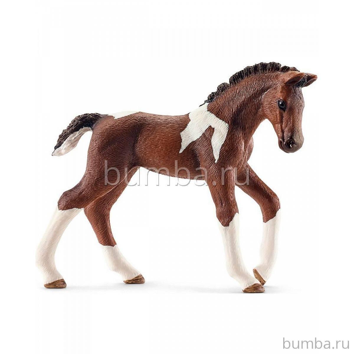 Темперамент и нрав лошадей