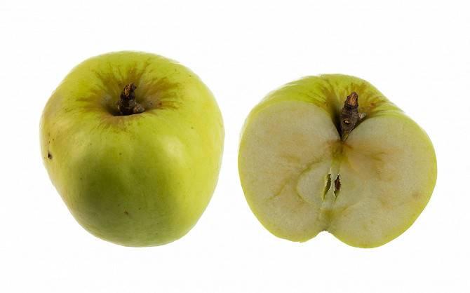 Яблоки гренни смит — описание, калорийность и полезные свойства