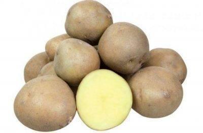 Сроки и правила уборки ботвы картофеля