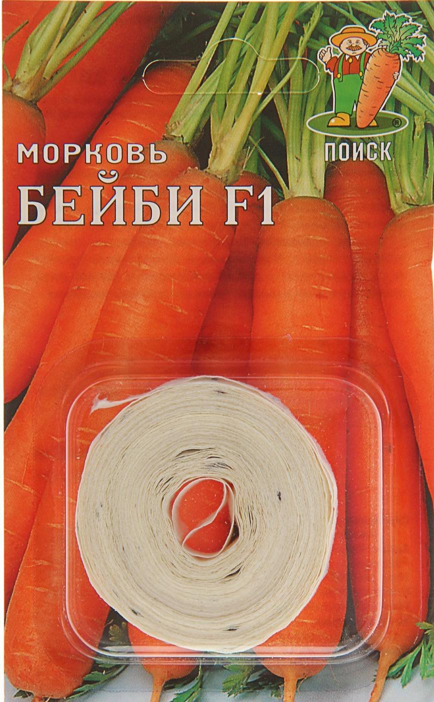 Как сажать морковь в открытый грунт семенами весной и летом: чтобы быстро взошла, пошаговая инструкция