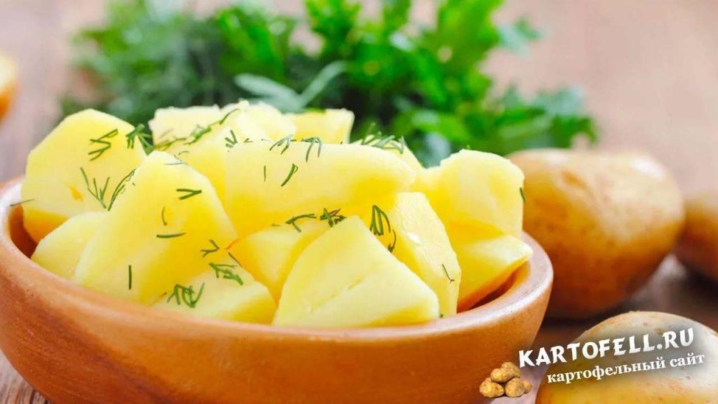 Польза и вред сырой картошки