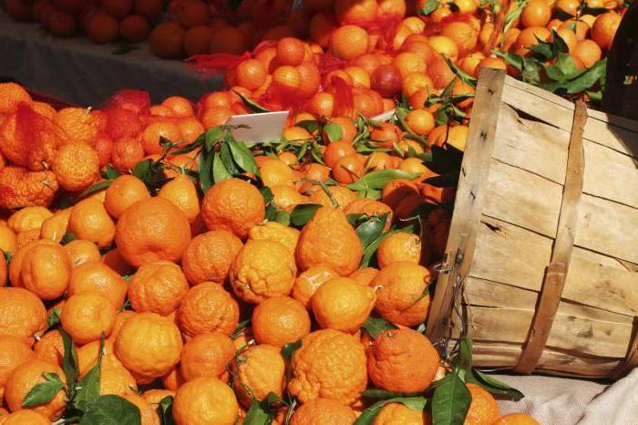 Хранение мандаринов в домашних условиях (как и где хранить мандарины)