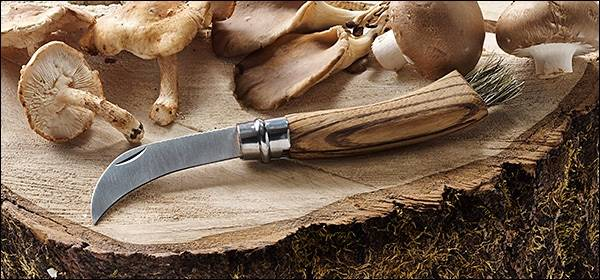 Нож для сбора грибов