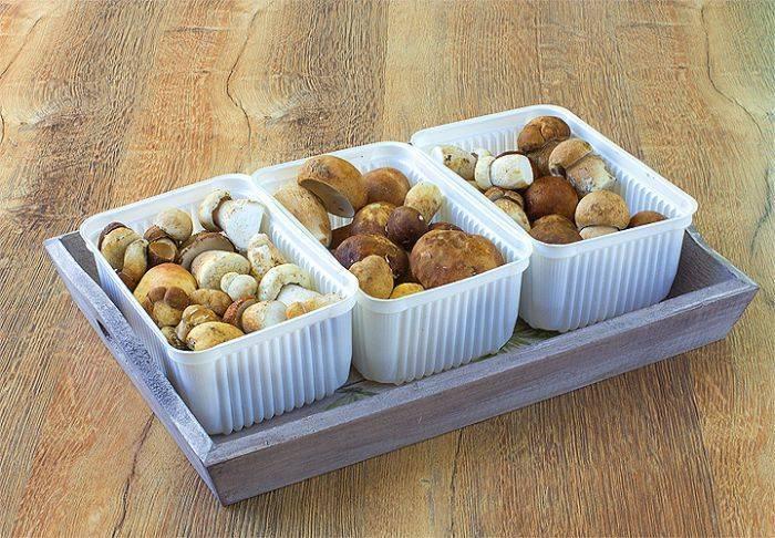 Как правильно заморозить грибы на зиму – заморозка грибов в домашних условиях » сусеки