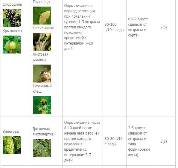 «битоксибациллин» - инструкция (дозировка, регламент применения)