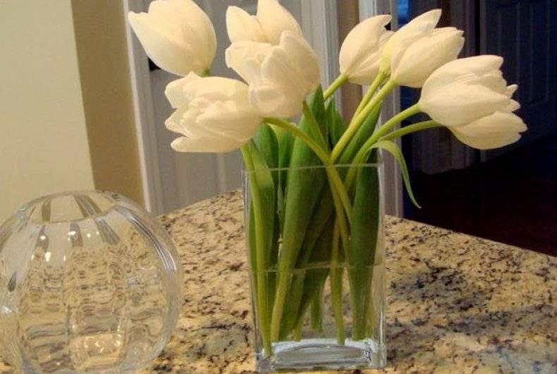 Как сохранить букет тюльпанов, если приобрести заранее перед 8 марта