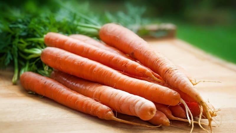 Морковь желтого цвета вред и польза