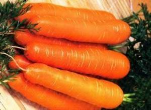 Посадка моркови под зиму: как и когда сажать овощ осенью, подходящие сорта, отзывы