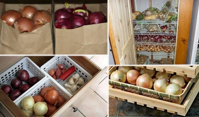 Как хранить лук зимой в домашних условиях