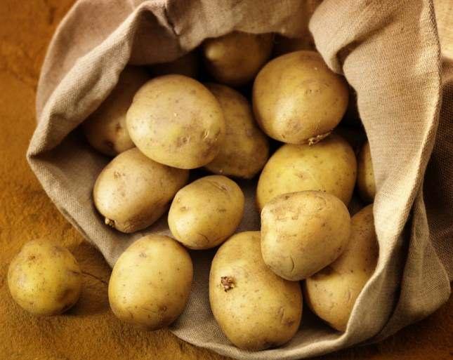 Картофель «ласунок»: описание сорта, фото, посадка и уход, достоинства и недостатки