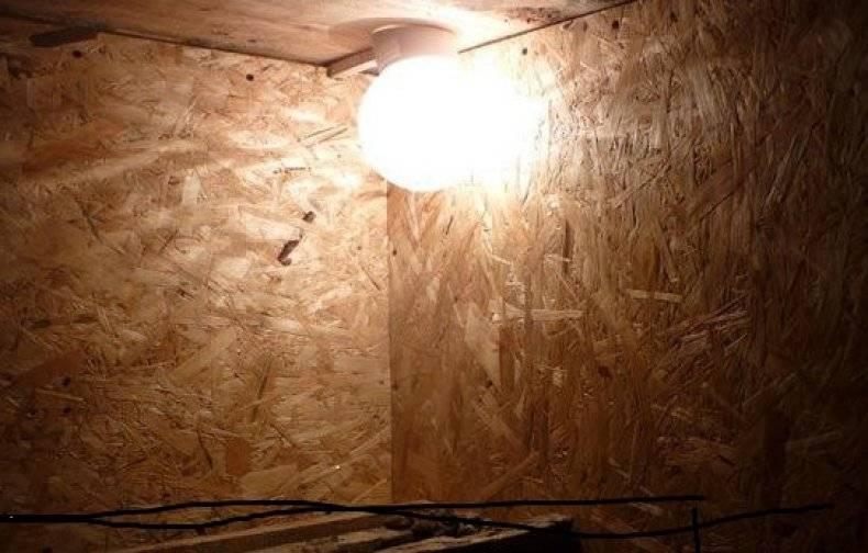 Лампы для обогрева курятника зимой, инфракрасные приборы