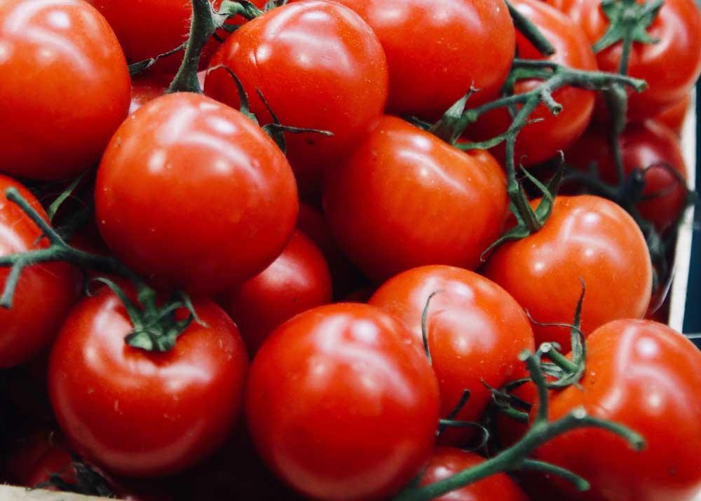 Какие могут быть нюансы при возделывании томатов или как правильно вырастить помидоры?