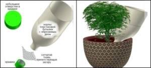 Автополив для комнатных растений своими руками: как сделать систему автополива для цветов из пластиковых бутылок и из капельницы в домашних условиях?