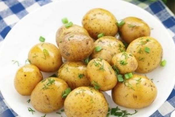 Картофель метеор: разъясняем развернуто