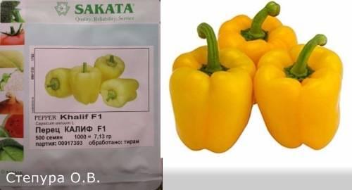 Болгарский перец египетская сила: ранний и урожайный сорт, описание и характеристика новинки, фото и отзывы, выращивание и уход