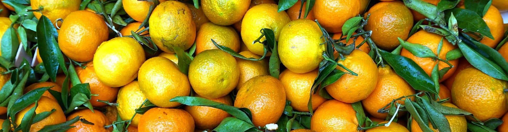 Эфирное масло мандарина. применение для лица и волос.