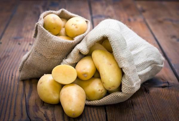 Картофель - польза и вред, свойства и применение