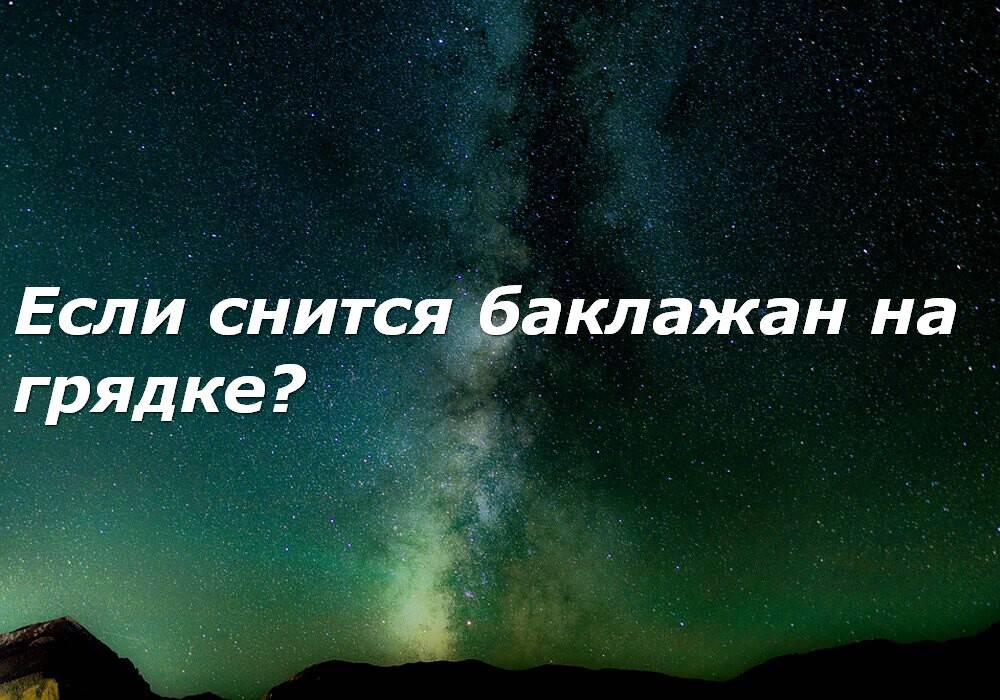 «сонник баклажан приснился, к чему снится во сне баклажан»