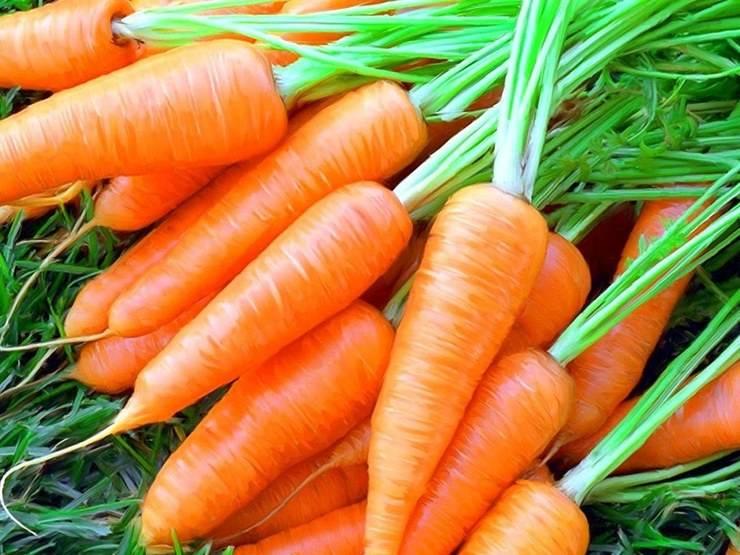Морковь при грудном вскармливании: можно ли кормящей маме в первый месяц и в последующие, рецепты употребления сырого и вареного овоща