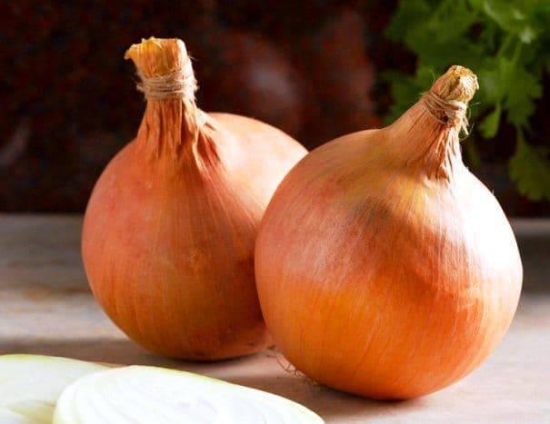 Лук стурон: описание сорта и советы по выращиванию