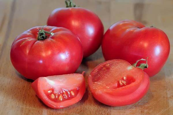 Характеристики томат «розовый слон», описание сорта, фото, отзывы