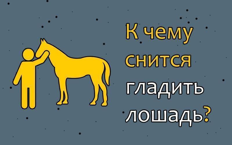 Скачу на лошади