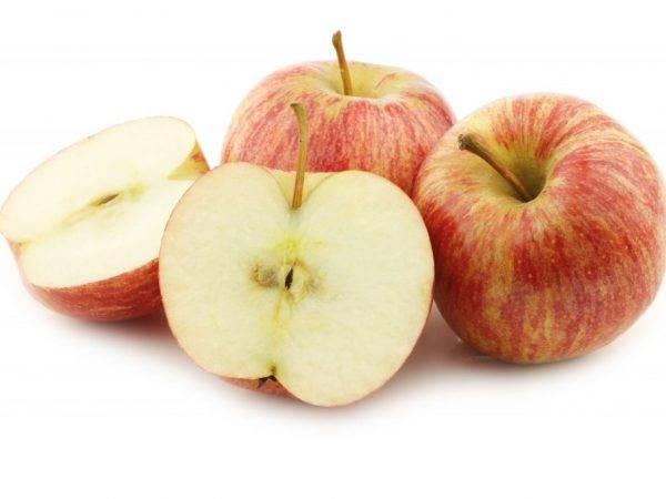 """Исследовательская работа на тему """"почему яблоко темнеет"""""""