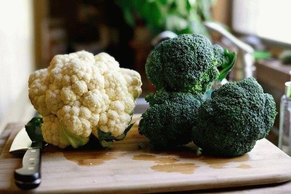 Чем брокколи отличается от цветной капусты. капуста брокколи.  овощ, который по внешнему виду похож на цветную капусту и отличающийся от нее только окраской. | здоровое питание