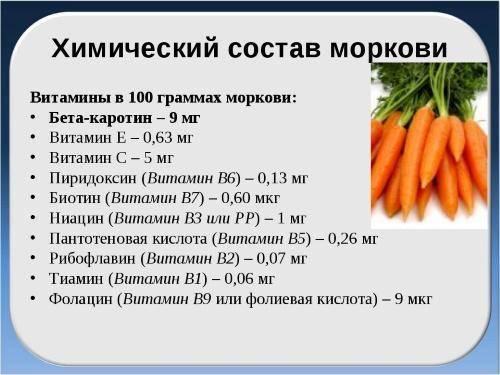 Морковь – калорийность, состав, польза и вред для организма