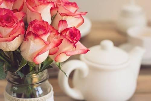 Чем подкормить розы до цветения?