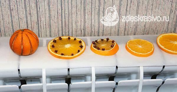 Как засушить апельсины для декора. интересные идеи использования сушёных цитрусов