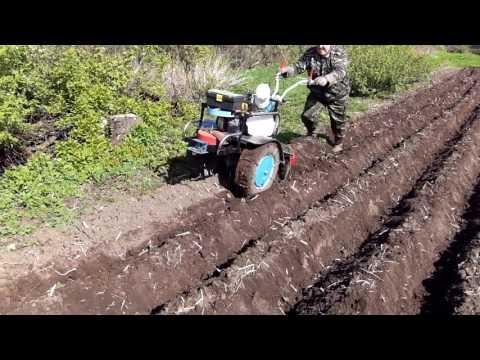 Секреты посадки картофеля в гребни мотоблоком и вручную. пошаговое руководство, фото, видео