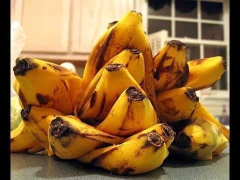 Удобрение из банановой кожуры для комнатных растений – польза, способы приготовления, дозировки
