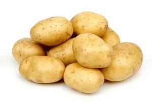 Картофель венета – описание сорта, фото, отзывы