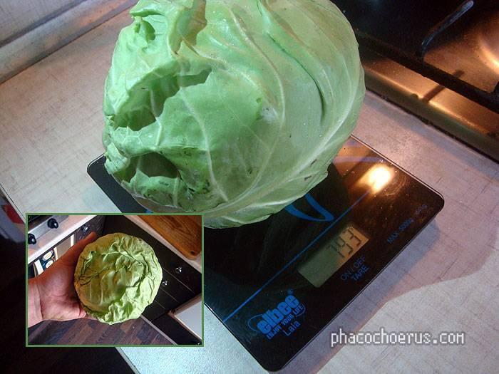 Брюссельская капуста – овощ не только для гурманов | компетентно о здоровье на ilive