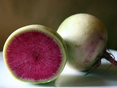Арбузный редис: описание, особенности выращивания, посадка, уход, польза, применение в кулинарии